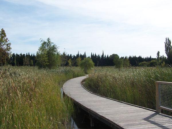 Chemin autour du lac de beaulieu